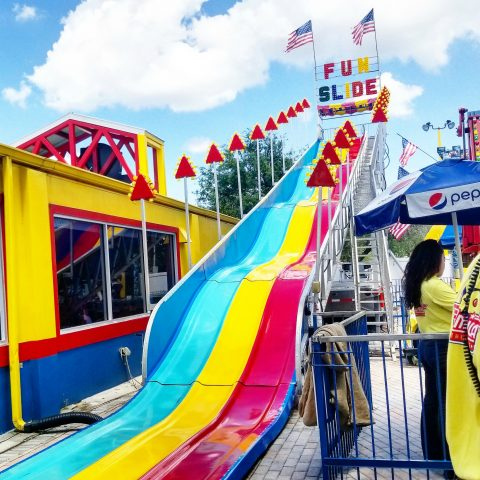 Giant Fun Slide Carnival Rental